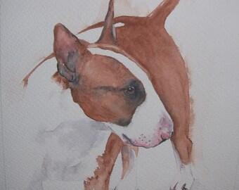 Bull Terrier watercolour painting