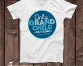 Only Grandchild Expiring Shirt - Pregnancy Reveal to Grandparents - Pregnancy Reveal Shirt - Big Sister - Big Cousin Shirt - Big Brother