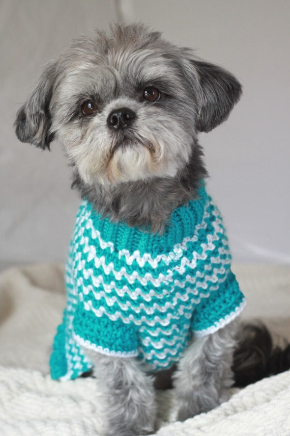 Tiny Dog Sweater Knitting Pattern