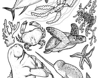 Ocean (Sea Shepherd Print)