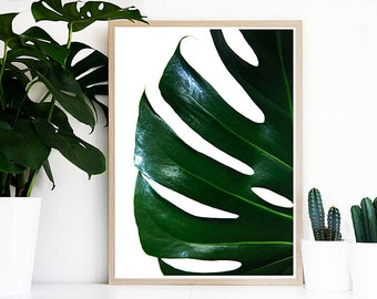 Tropical Leaf Poster - Print