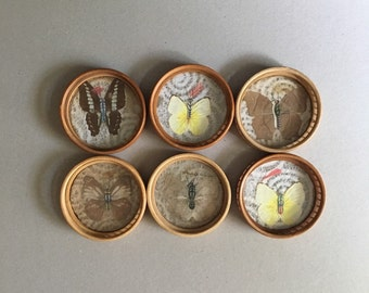 Vintage Butterfly coasters Set of 6 Wooden coasters Pressed butterflies coasters Home Garden table decor