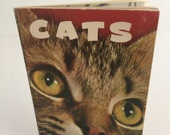 Cats by Louie Brown Van der Meid