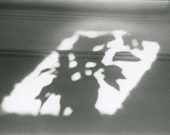Hand Printed Black and White Photograph - 'Shadow'