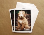 Custom Notecards Featuring Your Pet, Dog Lover Gift