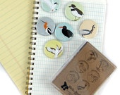 Shorebird Magnets--Set of 6
