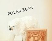 ABC art, polar bear art, letter photo, nursery art, nursery decor, letter p print, child room art, letter art, alphabet photo, alphabet art