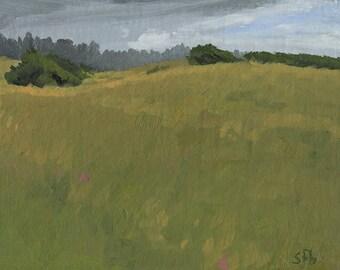 Original Oil Painting: Clifford Beach Grassland, Plein Air