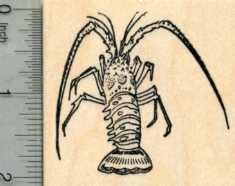 Florida Spiny Lobster Rubber Stamp, AKA Caribbean J30009 Wood Mounted