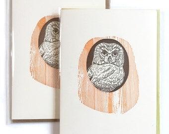 Owl Cards, Blank Greeting Card, Letterpress Cards, Box of 6 Cards, Bird Cards, Woodland Card Set, Handmade Cards, Bird Lover Card, mom card