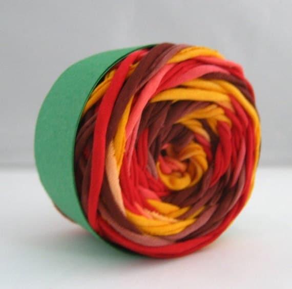 T Shirt Yarn Hand Dyed- Autumn 60 Yards