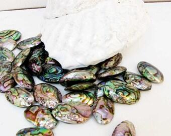 Abalone Oval  Jewelry Gemstone Beads 1 Bead #E14