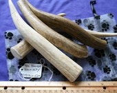 4 Piece X-Large Variety Deer Antler Dog Chews for Moderate to Heavy Chewers LESS than 45 lbs., s4pxlv-537