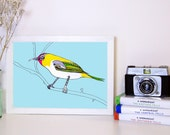 Bird Art Print, Colorful Bird Picture