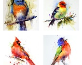 Songbird Coaster Set by Dean Crouser - MIX & MATCH Any Images