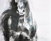 Reserved to Molly - Canter Horse, Original Charcoal Drawing of a Horse, Contemporary Original Fine Art, Animal