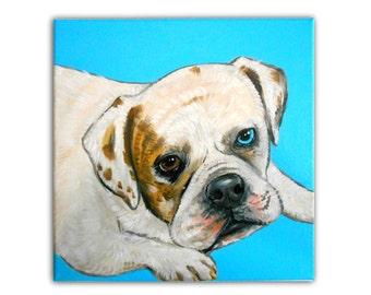 12x12 inch Custom Dog Portrait / Custom Pet Portrait / Custom Portrait 1 Pet Close-Up Solid background Original Painting Pet Memorial