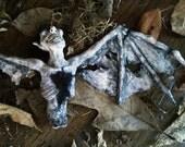 Dead Imp Creature