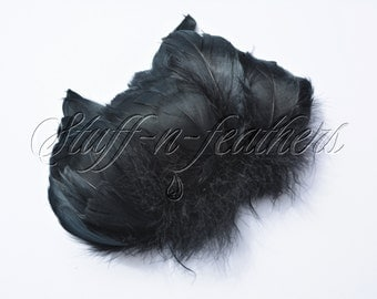 Black Goose coquille feathers, jet black feathers for millinery, crafts, costumes, decor, strung feathers, 2-5 in (5-12.5 cm) long / F199-2