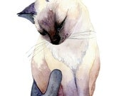 Siamese Kitty No.1, Archival Print of Original Watercolor, you choose size