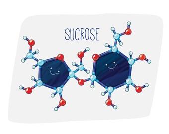 Sucrose Sugar Molecule / Wall art print / biology / cell / cute / science / blue / red / nursery / scientist / whimsical / atoms