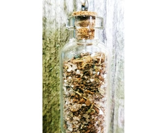 Bring Me the Money! - A magic spell bottle for increased wealth and money. Magic charm talisman spell necklace. Handcrafted by a witch.