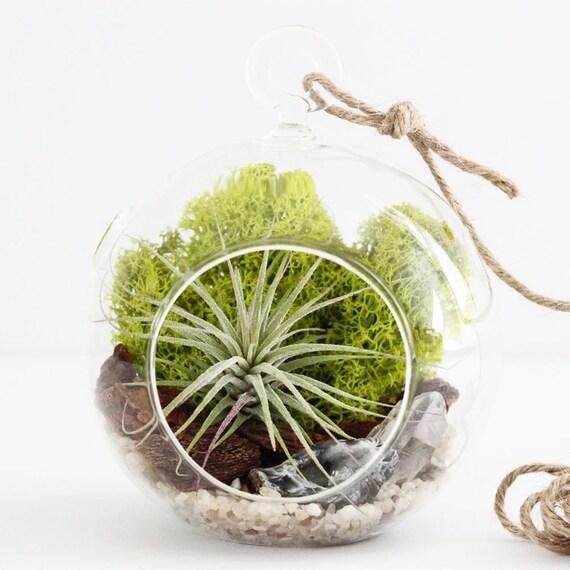 Air Plant Terrarium Kit || Geode + Quartz Crystal || Choose Small or Teardrop Hanging Glass Terrarium
