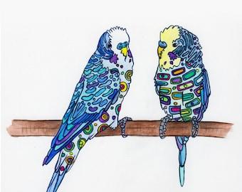 Birds - Parakeet Design