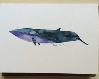 Brydes Whale // Watercolour Illustration // Blank Card