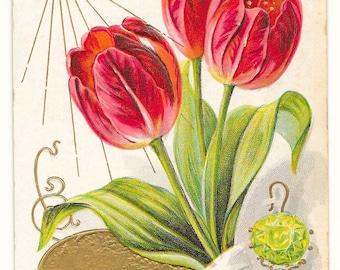 May Flower/Birthstone Birthday Postcard, 1908
