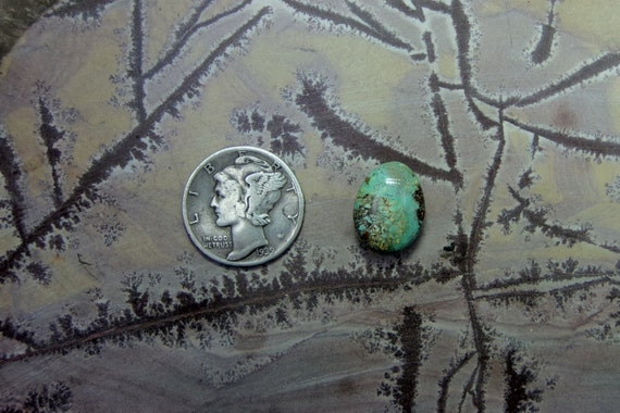 Royston Turquoise Cabochon Nevada Natural Handcut From