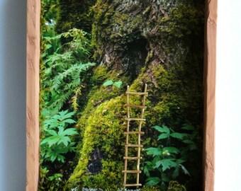 Rustic Woodland Faerie Shadowbox