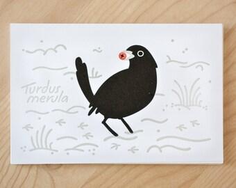 Blackbird winter postcard | letterpress