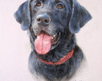 Portrait of dog from photograph, Lab, Pet, Drawing, Birthday gift