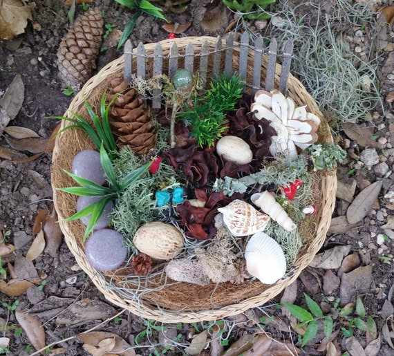 Fairy Garden Kit, Fairy Garden Accessories, Fairy Kit, Terrariums ...