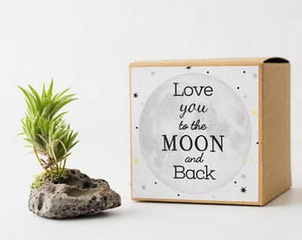 Love You To The Moon And Back Gift, Girlfriend Gift Air Planter Best Friend Birthday Long Distance Gift, Mom Gift, Cute Boyfriend Gift