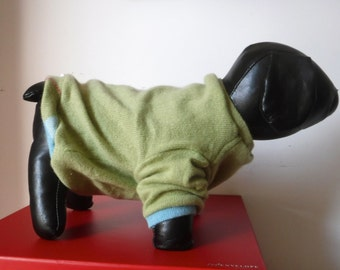 "SIZE XS, Cashmere Dog Sweater, Green, ""Little Softie"""