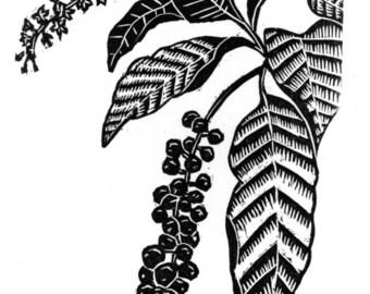 Pokeweed Woodcut Print