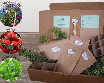 Kit ROMANTICÓN for farming (Strawberry, peppermint and a beautiful bouquet of wild flowers). You