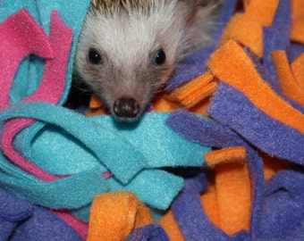 Cuddle Buddy's  for Hedgehogs and other Small Animals