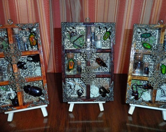 Small Cabinet of Curiosities wall hanger #4