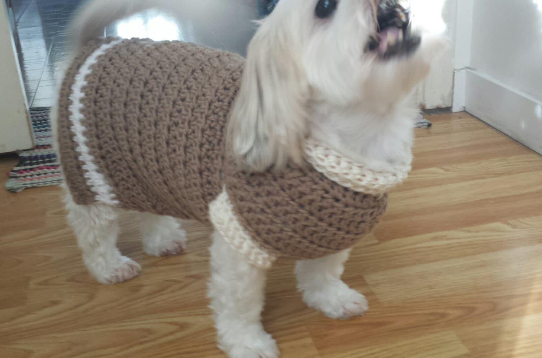 Lou Lou Easy Crochet Dog Sweater Pattern From