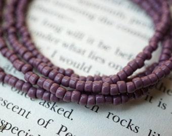 Mauve Seeds, 8/0 Seed Beads, Toho Beads