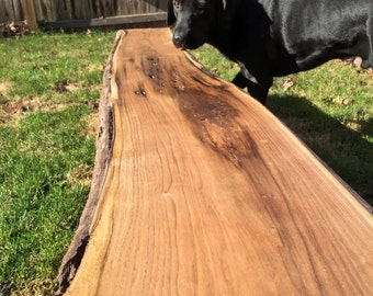 Live Edge Bench I Entry Bench I Rustic Bench I Mudroom Bench