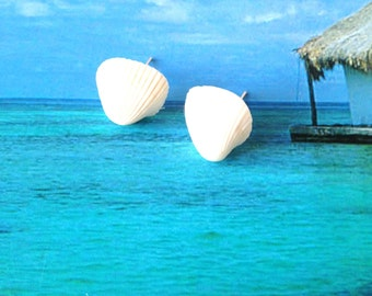 SEA ADVENTURESS -- Shell earrings stud earrings from phi phi island by All Things Natural