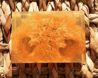 Honey & Loofah Bar Soap - Natural Soap, Loofah Soap, Handmade Soap, Bar Soap, Homemade Soap, Honey Soap, Luffa Soap