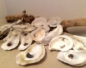 Oyster Shell Mix