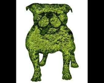 Bulldog Topiary Print