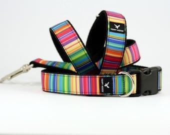 Vertical Stripe dog collar, Hand made in Australia, Stylish Dog collar, Dog bow tie, Puppy collar, Aqua collar, bright collar, Bright puppy