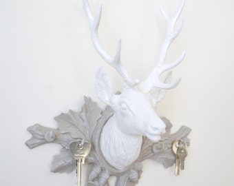 Deer trophy, white on taupe background, taxidermy